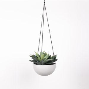 silkki baby agave ja ecopots amppeliruukku | viherviisikkokauppa.fi