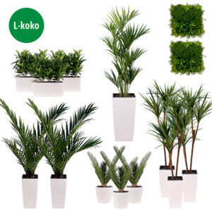 Vihersisustuspaketti | L | silkkikasvipaketti | viherviisikkokauppa.fi